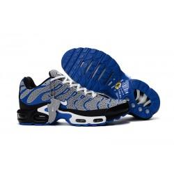 Scarpe da Sportive Nike Air Max Plus TN - Blu Grigio